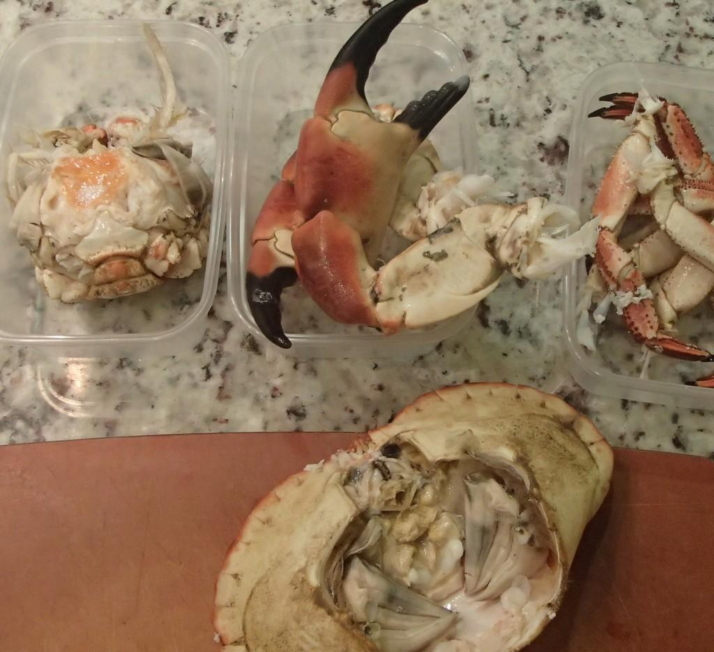 zerlegte Krabbe